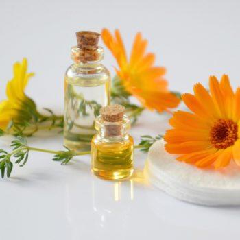Öle mit Pflanzen